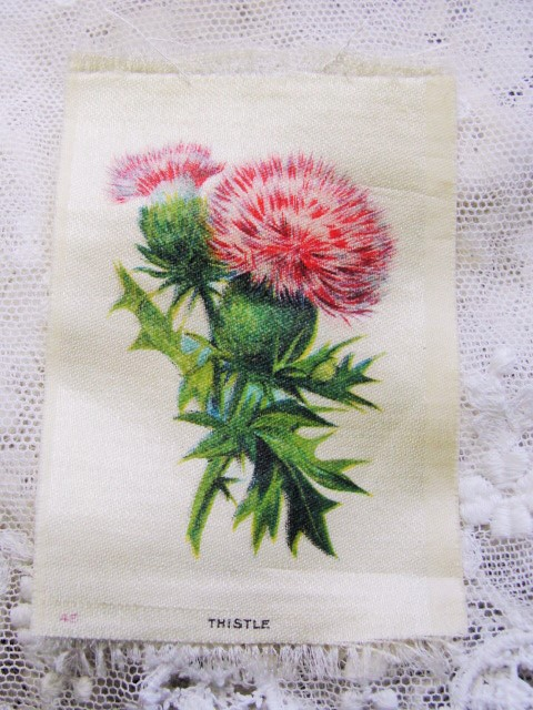 ANTIQUE Cigarette Tobacco SILK Printed Flowers THISTLE For Fine Sewing Quilting Projects or Frame It For Shabby Chic Romantic Cottage Decor