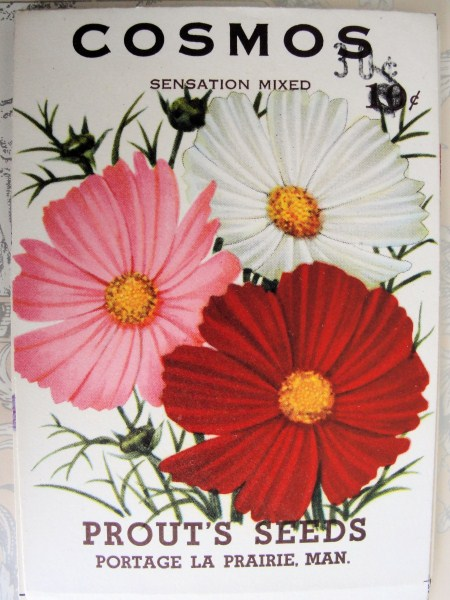 VINTAGE SEED PACKET SHABBY CHIC FLORAL GREAT FOR FRAMING
