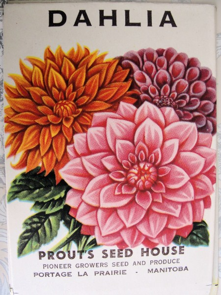 VINTAGE SEED PACKET PRETTY FLOWERS GREAT TO FRAME
