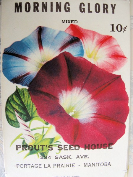 VINTAGE SEED PACKET BEAUTIFUL COLORFUL GREAT TO FRAME