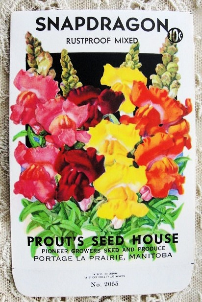 Antique Seed Packet Colorful Flowers Suitable To Frame Cottage Chic Decor Scrapbooking Crafts Weddings Gifts